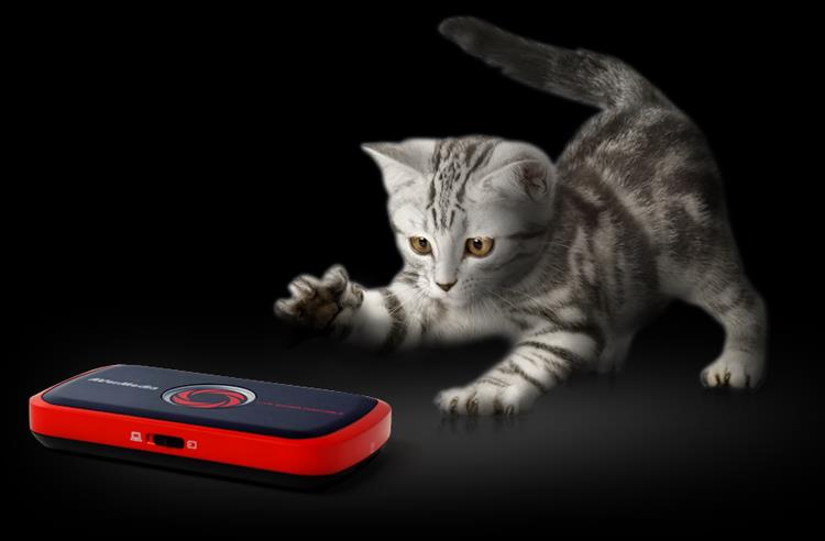 Playful, yet Powerful. A kitty playing with LGP. Easy to use. H.264 hardware encoder.